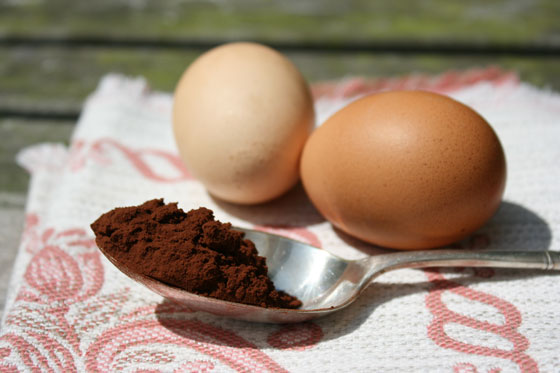 Eggs-and-Cocoa-Powder