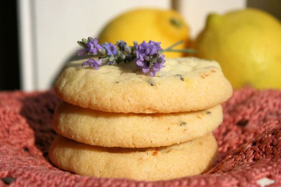 Lavender-and-Lemon-Biscuits