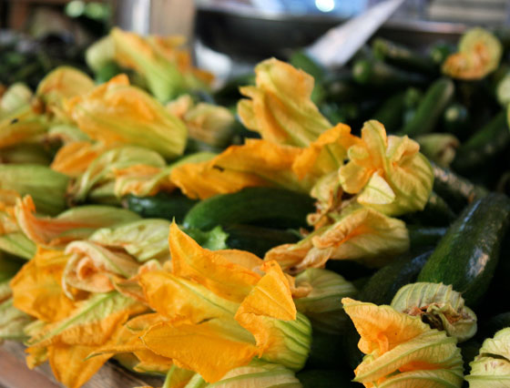 Courgette-Flowers