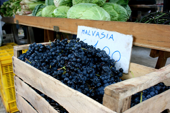 Malvasia-Grape