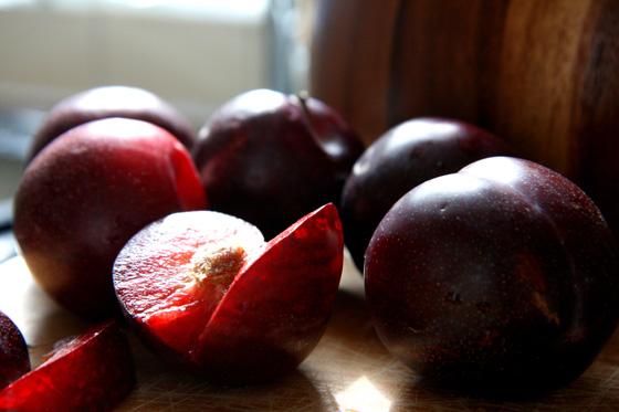 End-of-Summer-Plums4